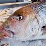 Targi Przetwórstwa i Produktów Rybnych – POLFISH