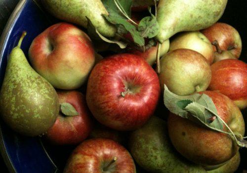 jablka_gruszki