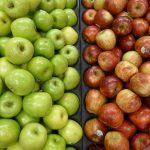 Termin kontroli sadów prod. jabłka na rynek chiński