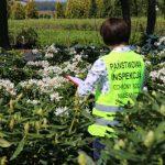 Czy zdrowie roślin jest ważne dla ludzi?