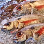 Spożywanie ryb <br> a reumatoidalne zapalenie stawów