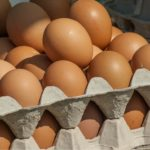 Skażone jaja nie były wysyłane do Polski