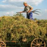 Rolnicy otrzymali wsparcie z ARR