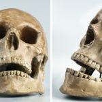 Rolnictwo zmieniło ludzką czaszkę