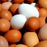 Jajeczny biznes <br> pod kreską