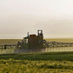 Regionalne <br> warsztaty na temat <br> nielegalnych środków ochrony roślin