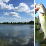 Ryba jako marka regionu