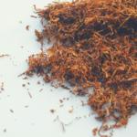 Susz tytoniowy <br>pod nadzorem