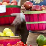 Oznakowanie żywności ekologicznej