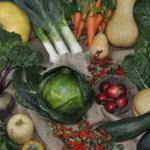 Lepsza współpraca supermarketów<br> i rolników