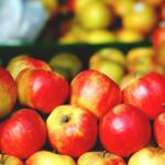 Czechy: pestycydy<br> w jabłkach z Polski