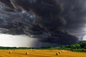 burza rolnictwo pole