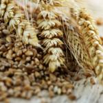 Ceny produktów rolnych