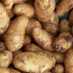 Sytuacja na rynku ziemniaka w Polsce
