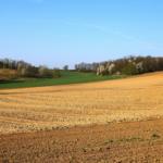 Rolnictwo zrównoważone priorytetem