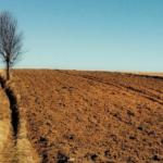 Uproszczenia<br> dla rolników