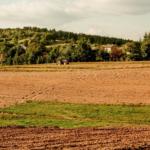 Restrukturyzacja zadłużenia podmiotów prowadzących gospodarstwa rolne