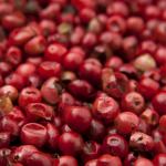Jagody goji pomogą leczyć choroby tropikalne