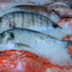 Spożywanie ryb może przedłużyć życie
