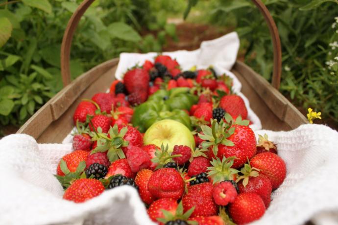 Pestycydy W Owocach I Warzywach Zywnosccompl