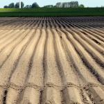 Ograniczenia<br> w stosowaniu środków ochrony roślin
