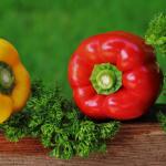Informacje<br> o producentach<br> w rolnictwie ekologicznym