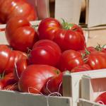 Znakowanie produktów bez GMO