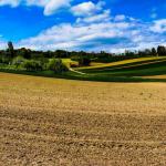 PROW dostosowany<br> do potrzeb rolników