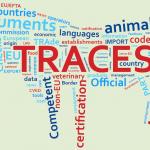 System TRACES – instrukcja użytkownika