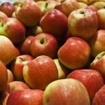 Dostęp do rynku krajów trzecich dla towarów pochodzenia roślinnego