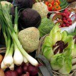 NIK o wspieraniu rozwoju rolnictwa ekologicznego