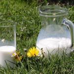 Utrzymujemy eksport mleka i produktów mlecznych do Japonii