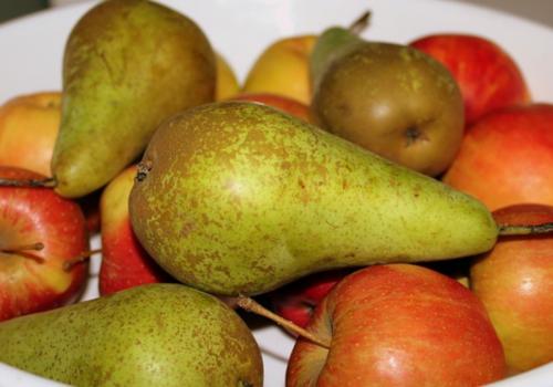 jablka i gruszki