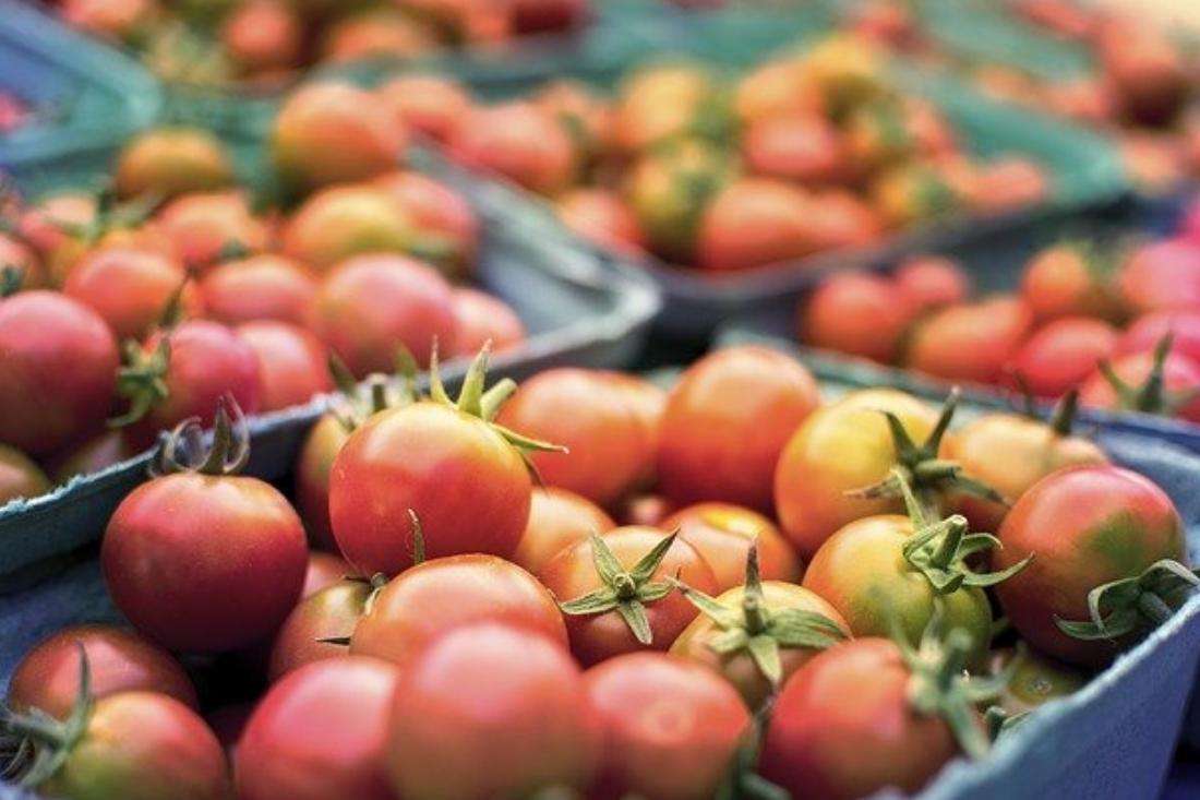 Jedna inspekcja kontrolująca jakość żywności w obrocie<br> i handlu